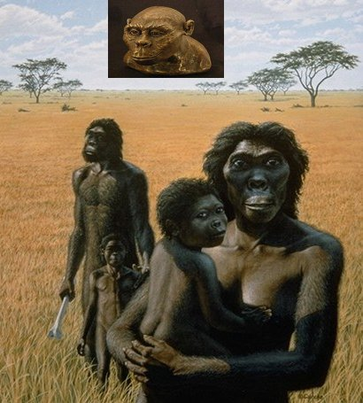 australopithecus-africanus1