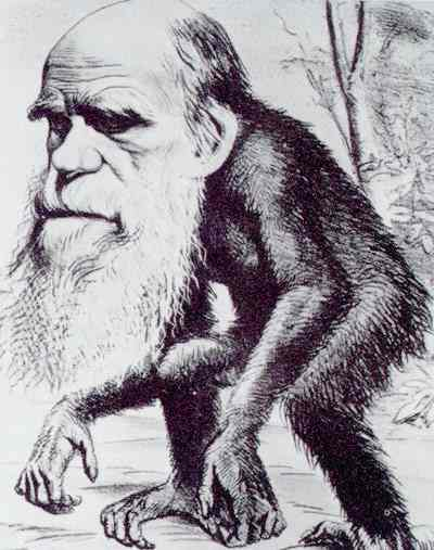 darwin_ape_cartoon