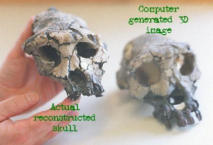 toumai actual and computer