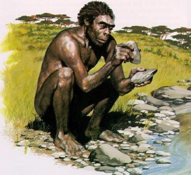 homo-habilishomo-habilis