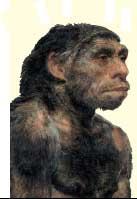 neanderthal-prehistoric-man