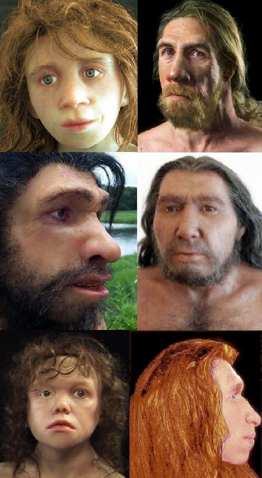 neanderthal-reconstructions1
